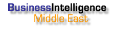 Business Intelligence - Middle East